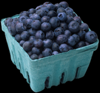 2014-05-04_basket_of_blueberries
