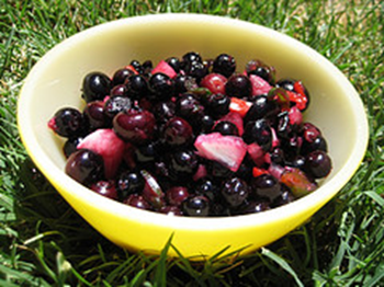 2014-05-04_blueberry_salsa