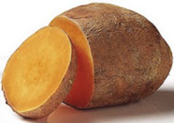 2014-05-04_sweet_potato