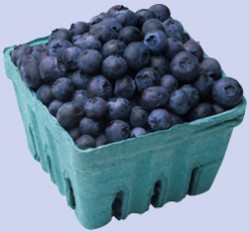 blueberry_basket copy