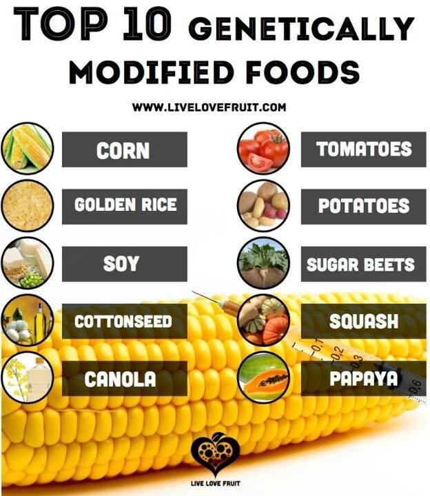 Top Energy Food List