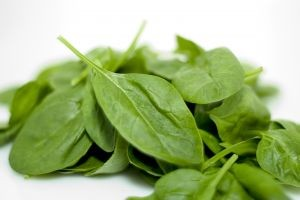 Spinach Fights Fatigue