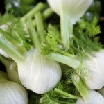 Fennel Bulb Recipe
