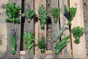 Fresh Herbs Tarragon Vinaigrette Recipe