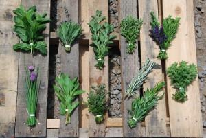 Fresh Herbs Tarragon Vinaigrette Recipe